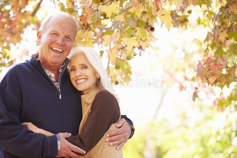 Höga par som går till och med Autumn Woodland royaltyfria bilder