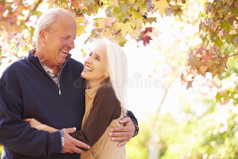 Höga par som går till och med Autumn Woodland arkivfoton