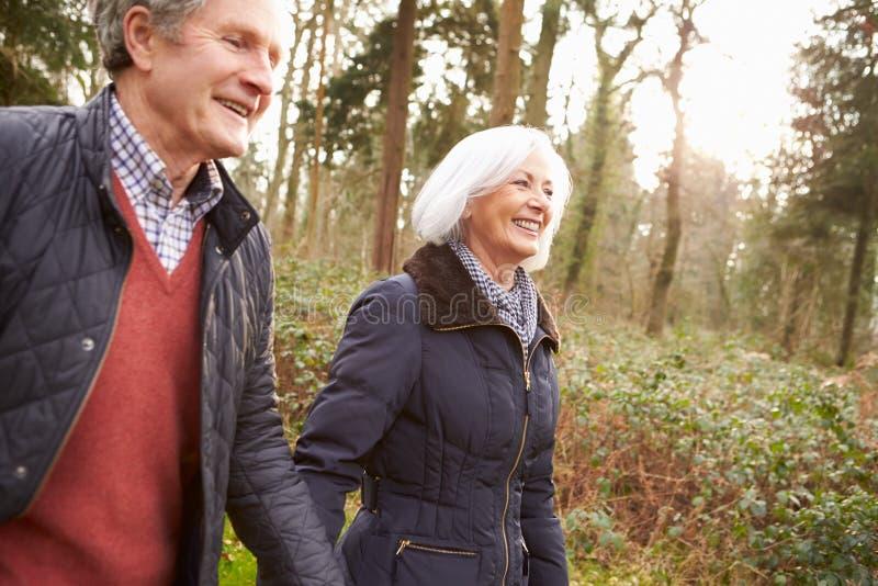 Höga par som går till och med vinterbygd royaltyfria bilder