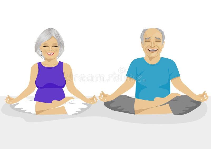 Höga par som gör yoga Kropp och mening i harmoni med naturen royaltyfri illustrationer