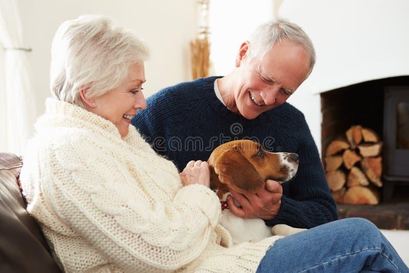 Höga par som hemma kopplar av med den älsklings- hunden royaltyfria foton