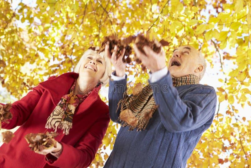 Höga par som kastar sidor in i luft royaltyfri foto