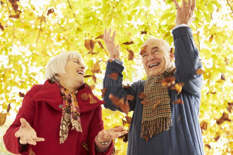 Höga par som kastar sidor in i luft royaltyfria foton
