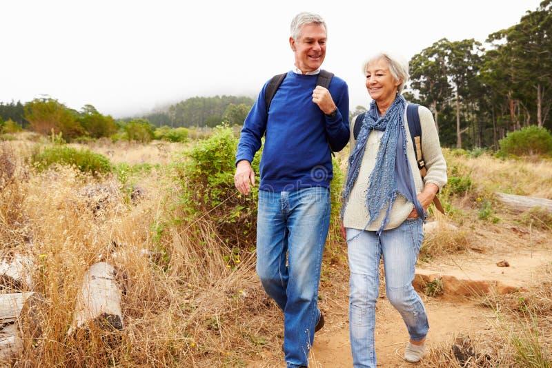 Höga par som tillsammans går i en skog royaltyfria foton