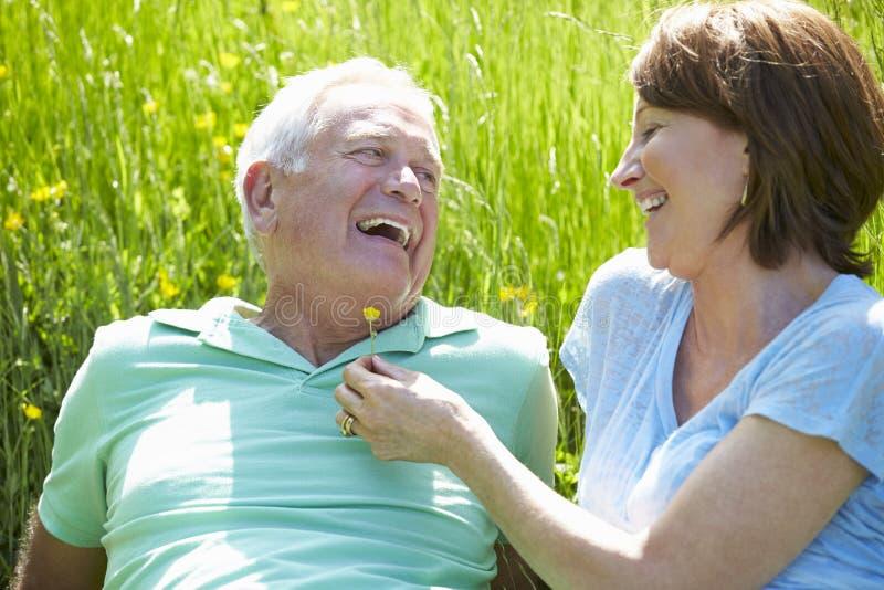 Höga par som tillsammans kopplar av i sommarfält arkivfoton