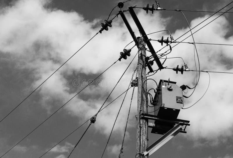Höga spänningselströmkablar och isolatorer som ses på träpoler arkivfoton