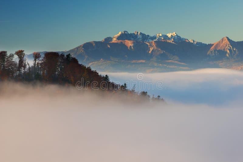 Höga Tatras från Pieniny royaltyfri foto