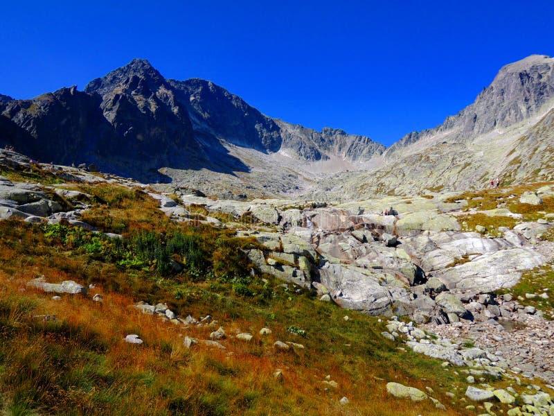 Höga Tatras Moutains royaltyfri fotografi