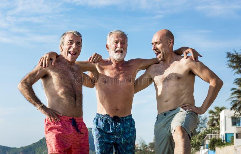 Höga vänner som tycker om stranden i sommartiden royaltyfria foton