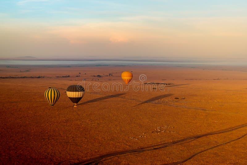 Höga vinkelskott på tre luftballonger vid soluppgången i Masai mara nationalpark i Kenya royaltyfri bild