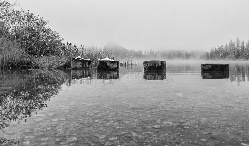 Högar i den svartvita höstsjön fotografering för bildbyråer