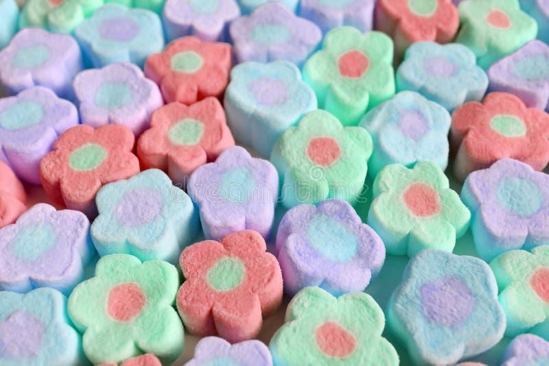 Högen av blomman för pastellfärgad färg formade marshmallowgodisar för bakgrund eller tapet royaltyfri fotografi