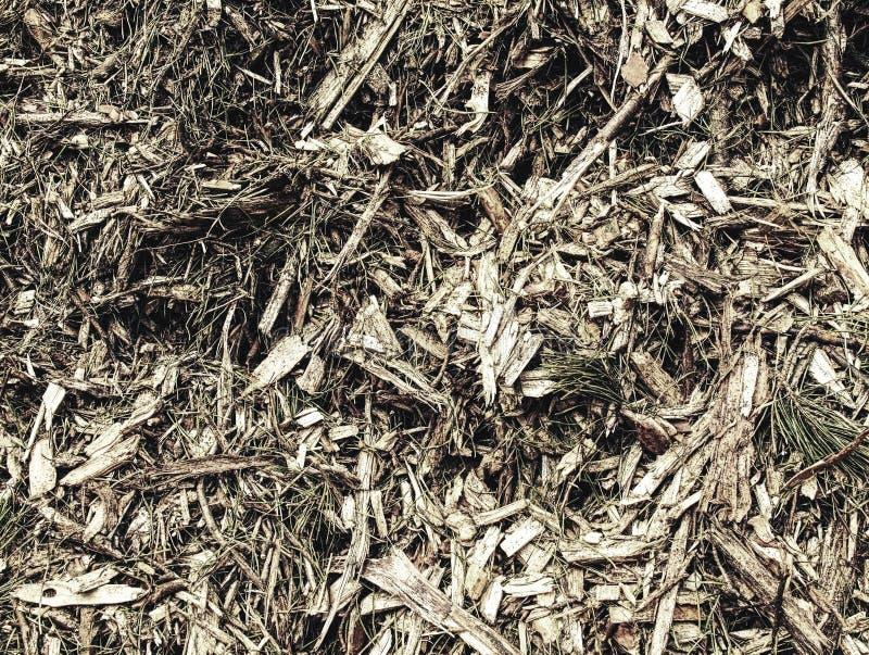 Högen av wood chiper och sågspån kan användas för biobränsletillverkning royaltyfria foton