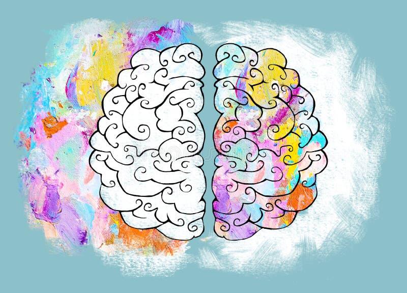 Höger och vänster halvklot av den mänskliga hjärnan vektor illustrationer