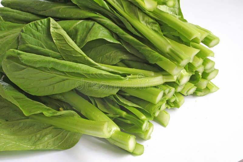 högg av grönsaker för snitt nytt royaltyfri foto