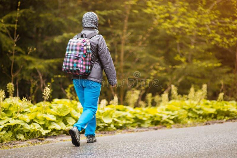 Högre 60 år gamla kvinnor som vandrar i höstskog arkivbilder
