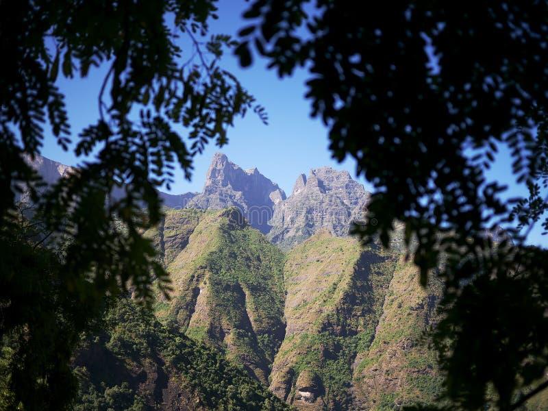 Högre delar av Simien berg royaltyfri bild