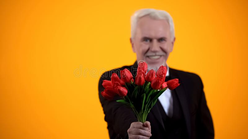 Högre herre som presenterar tulips bouquet och leende, uppriktigt hälsande semester arkivbilder