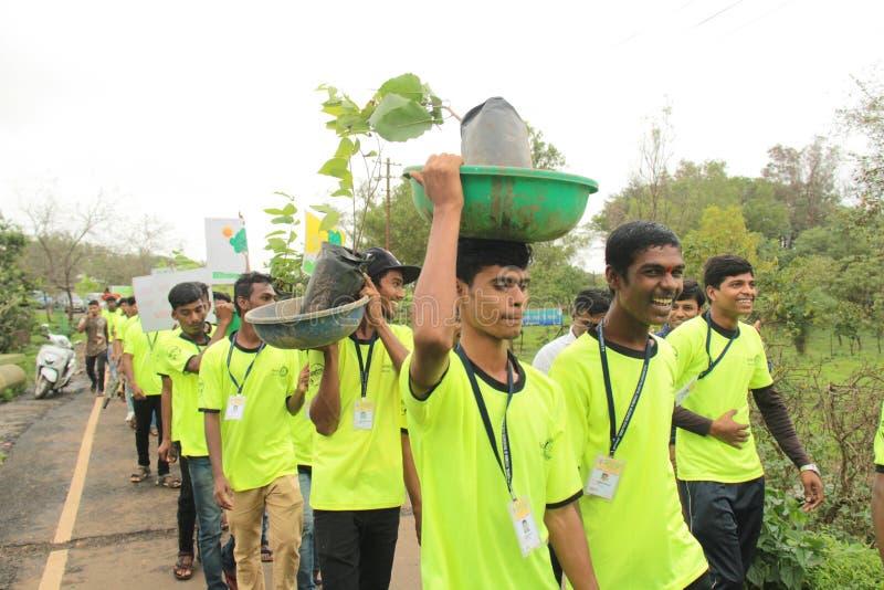 Högskolestudentvolontärer främjar trädkolonin royaltyfria foton