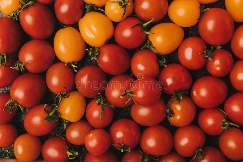 högstämd sikt av mogna röda och orange tomater arkivbilder