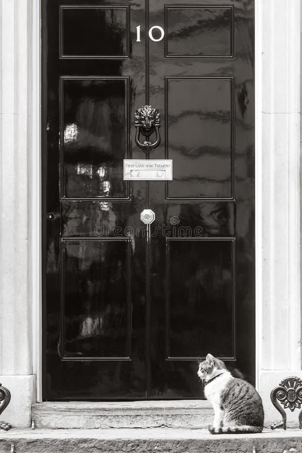 Högsta råttfångarekatt för Downing Street 10 arkivbilder