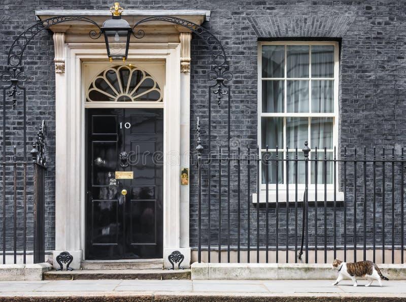 Högsta råttfångarekatt för Downing Street 10 royaltyfri foto