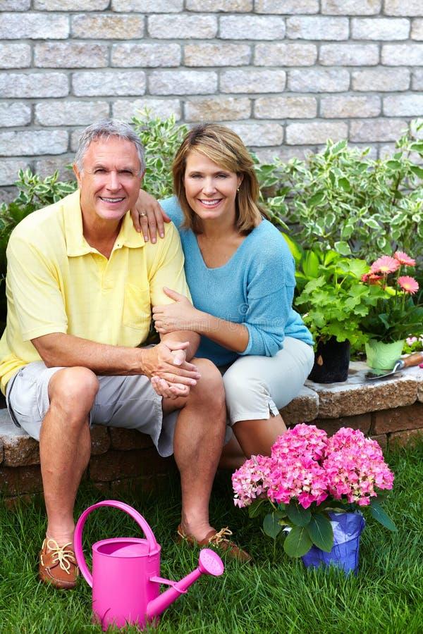 Högt arbeta i trädgården för par. arkivfoto