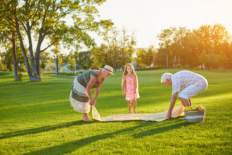 Högt folk med barnbarnet, picknick royaltyfri fotografi