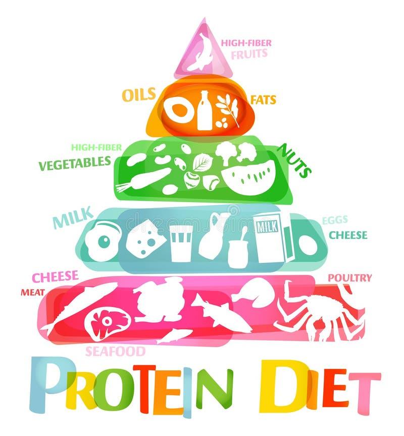 Högt - protein bantar vektor illustrationer