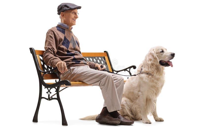 Högt sammanträde på en bänk med hans hund royaltyfria foton