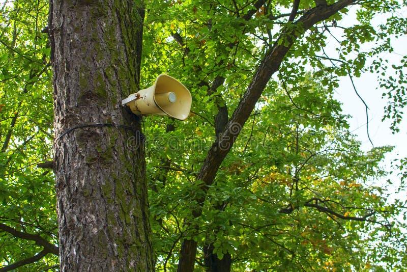Högtalare på trädet arkivfoton