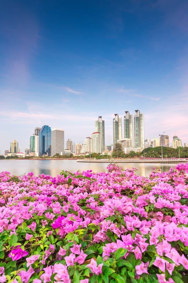 Högväxt byggnad bak Benjakiti parkerar i Bangkok, Thailand arkivfoton