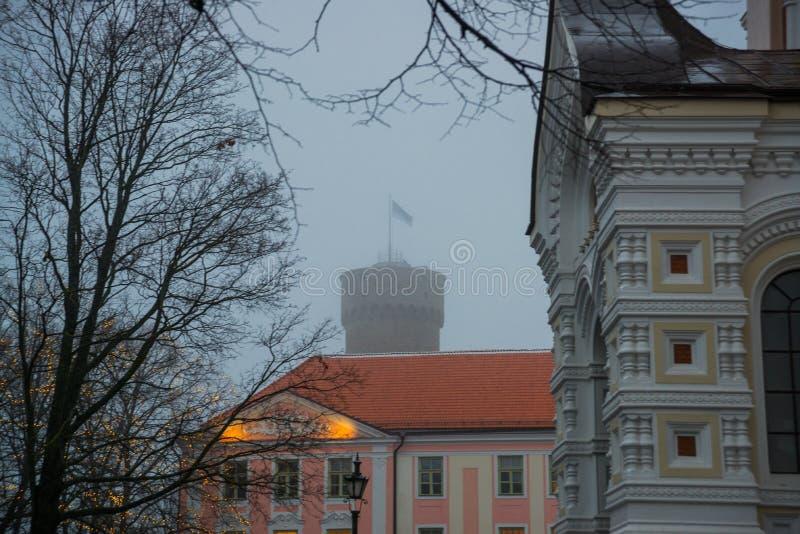 Högväxt Hermann torn och parlamentbyggnad Toompea regulatorer arbeta i trädgården, Tallinn, Estland arkivbilder