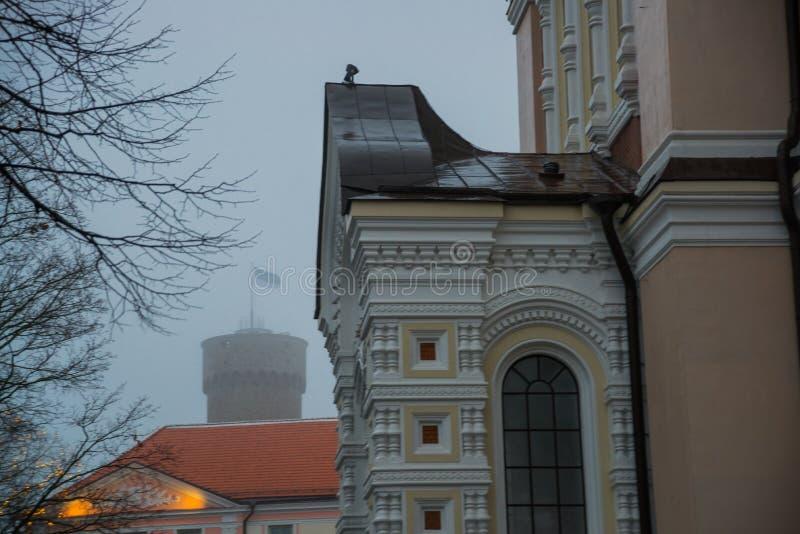 Högväxt Hermann torn och parlamentbyggnad Toompea regulatorer arbeta i trädgården, Tallinn, Estland royaltyfri foto
