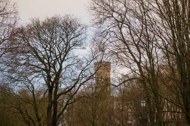 Högväxt Hermann torn och parlamentbyggnad Toompea regulatorer arbeta i trädgården, Tallinn, Estland royaltyfri bild