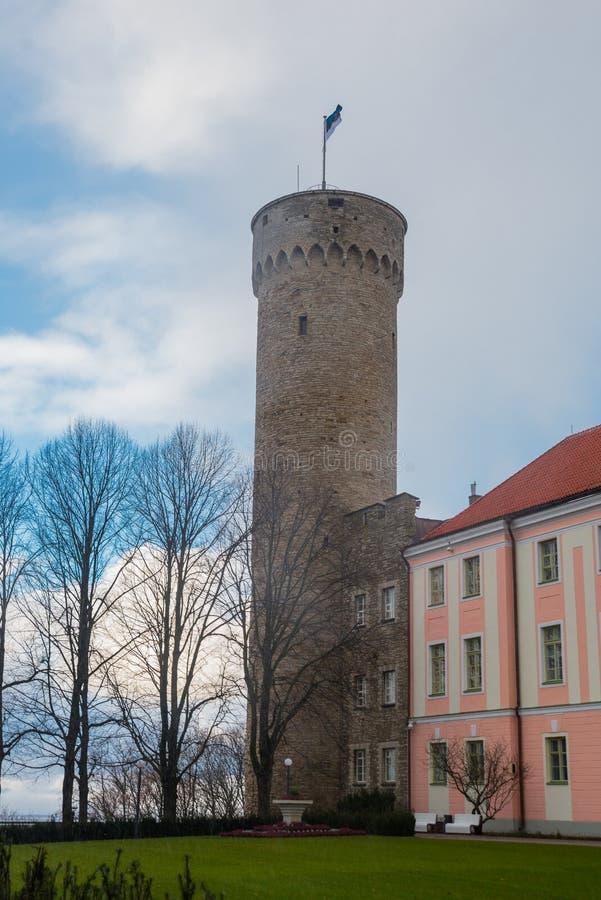 Högväxt Hermann torn och parlamentbyggnad Toompea regulatorer arbeta i trädgården, Tallinn, Estland arkivfoton