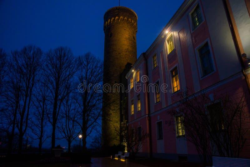 Högväxt Hermann torn och parlamentbyggnad Toompea regulatorer arbeta i trädgården, Tallinn, Estland Nattlandskap med belysning arkivfoton