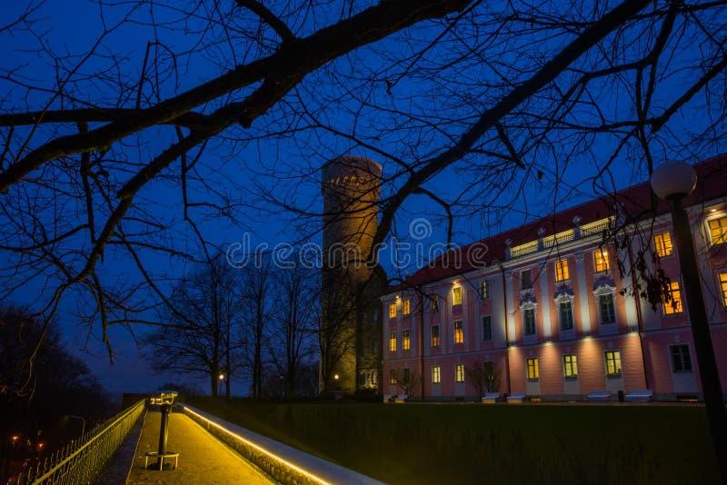 Högväxt Hermann torn och parlamentbyggnad Toompea regulatorer arbeta i trädgården, Tallinn, Estland Nattlandskap med belysning arkivbilder