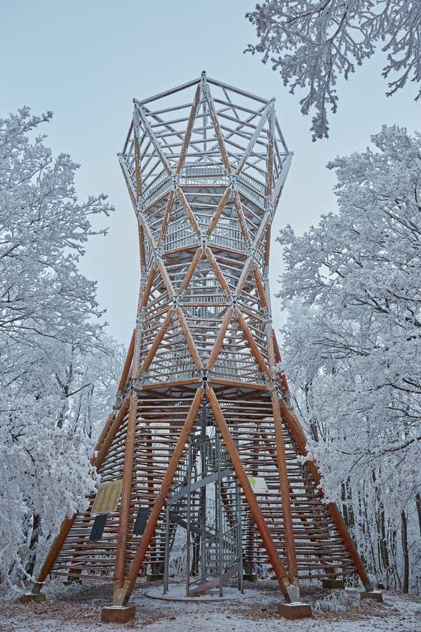 Högväxt trätorn i vinterskogen i en molnig kall dag från Ungern royaltyfri fotografi