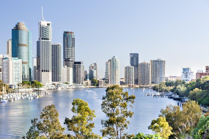 H?gv?xta byggnader f?r Brisbane stad under den bl?a himlen royaltyfri bild