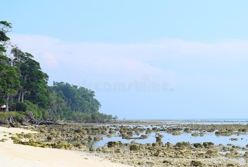 Högväxta träd, Azure Sea Water, stenigt och Sandy Pristine Beach och klar blå himmel - solnedgångpunkt, Laxmanpur, Neil Island, A royaltyfri foto
