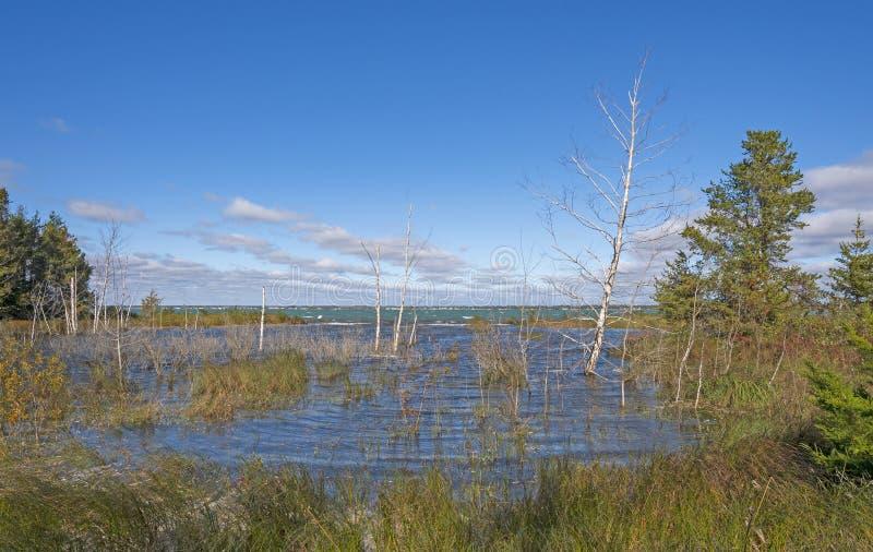 Högvattenlagunen vid sjön Hurons stränder royaltyfri bild