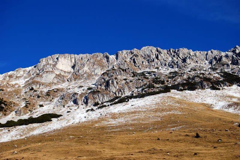 Download Höhe oben stockfoto. Bild von schön, gras, leben, berge - 12203364