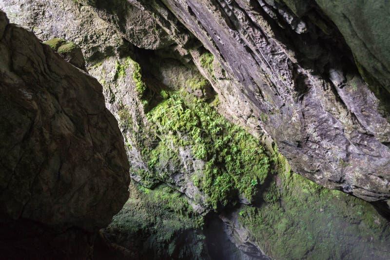 höhle lizenzfreie stockfotografie