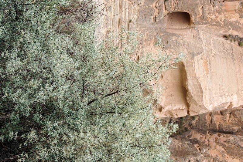 Höhlen geschnitzt von farbigem Tuff lizenzfreies stockbild