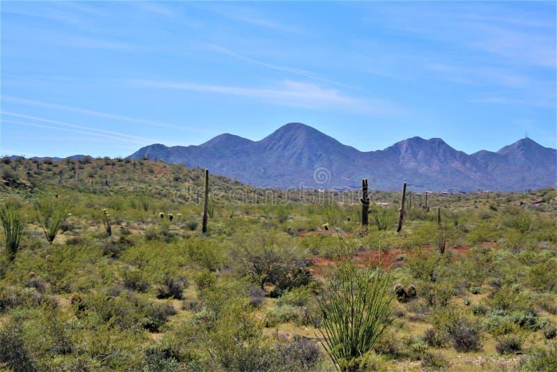 Höhlen-Nebenfluss, Maricopa County, Arizona, Vereinigte Staaten lizenzfreie stockfotografie