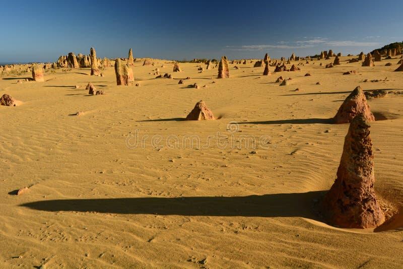 Höjdpunktökenlandskap Nambung nationalpark cervantes Västra Australien australasian fotografering för bildbyråer