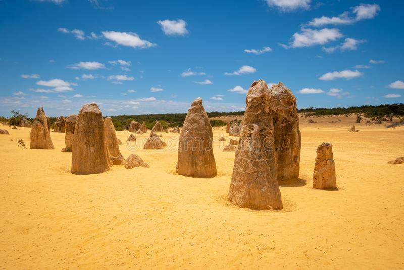 Höjdpunktefterrätten i västra Australien med dess berömda upprätta stående stalagmit royaltyfri foto