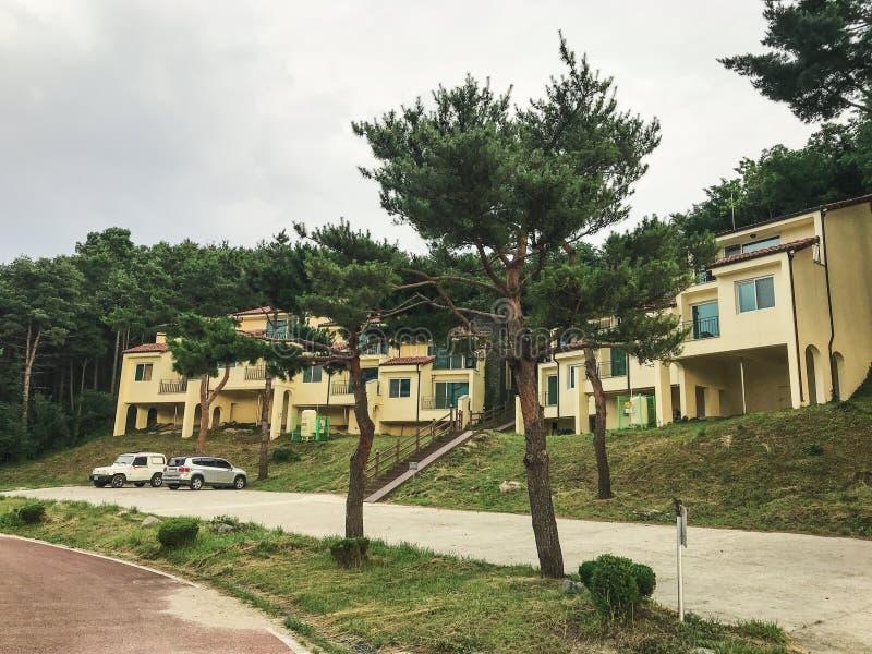 Höjdpunkten sörjer träd och hus i den Sokcho staden 30 ändrande för korea för guardsjuli konung söder pal s seoul arkivfoto