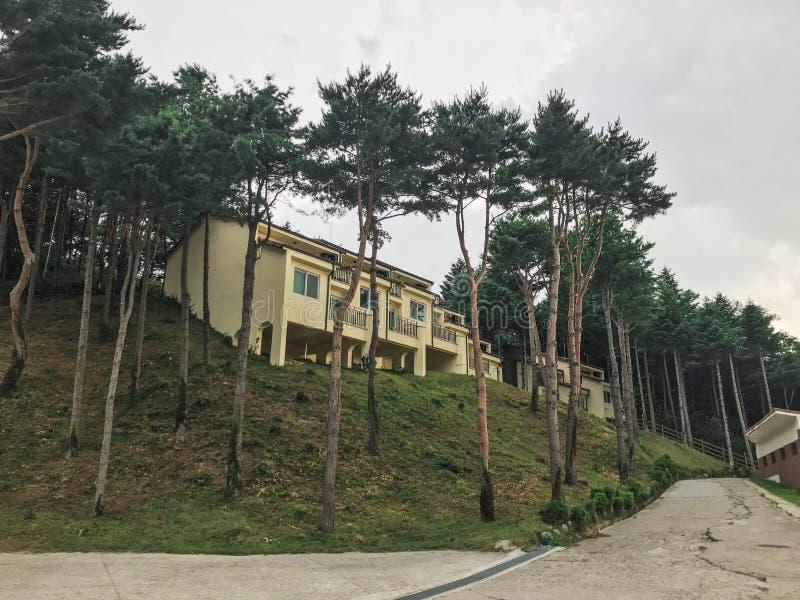 Höjdpunkten sörjer träd och hus i den Sokcho staden 30 ändrande för korea för guardsjuli konung söder pal s seoul fotografering för bildbyråer